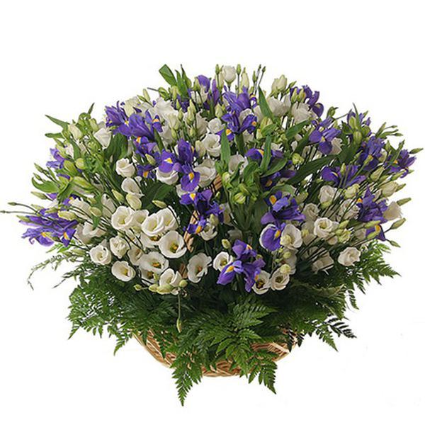 Доставка, цветы с доставкой санкт-петербург недорого по номеру
