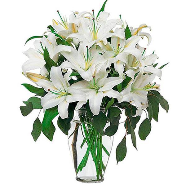 Белые лилии букеты цена, цветы назрани доставка