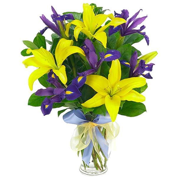 фото ирисы и лилии передозировки новокаина