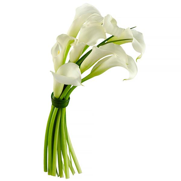 Цветы ровном, круглый букет невесты калл купить москва
